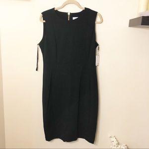 Calvin Klein Sheath Dress!